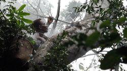 Changement climatique: l'Afrique attend une juste