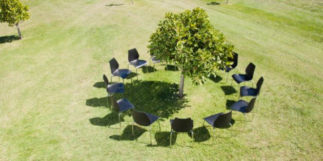 Circle of office chairs around tree in