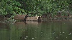 La qualité des sources d'eau potable préoccupante à