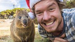 Cet homme est passé maître dans l'art de faire des selfies avec des animaux