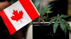 L'accès à la marijuana médicale trop