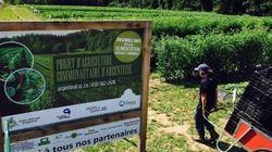 Des terres municipales nourrissent plus de 2 000 personnes dans la MRC
