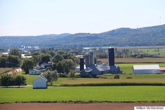 Gestion de l'offre : les producteurs laitiers du Québec et de l'Ontario manifestent à Montréal