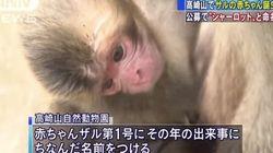 Un zoo japonais s'excuse pour le nom donné à ce petit