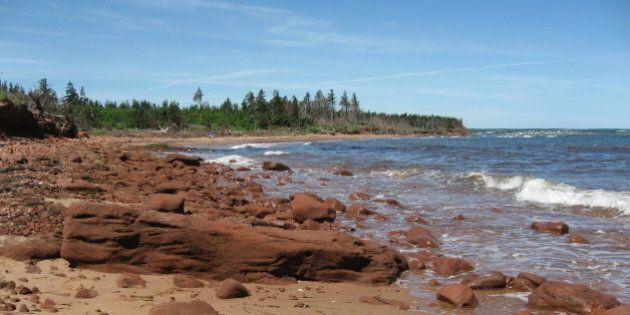 Une adolescente de 12 ans nage du Nouveau-Brunswick à