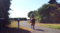 Les vacances à Saumur, en