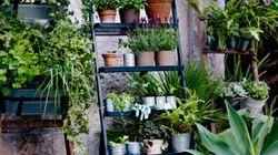 15 suggestions de pots et de jardinières pour embellir votre