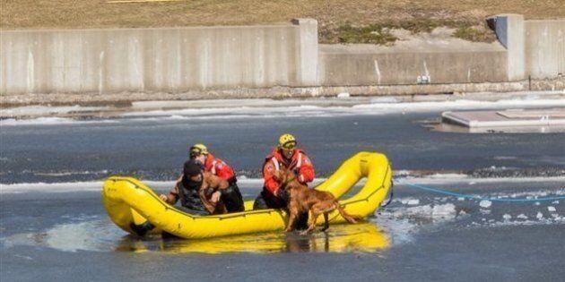 Un homme et son chien sauvés des glaces du canal de Lachine