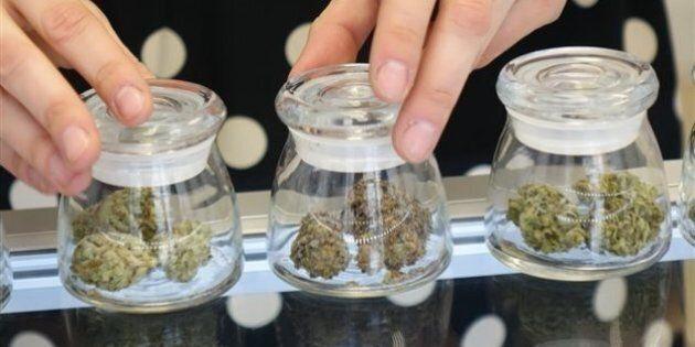 Des spécialistes de la santé publique prônent la légalisation de la