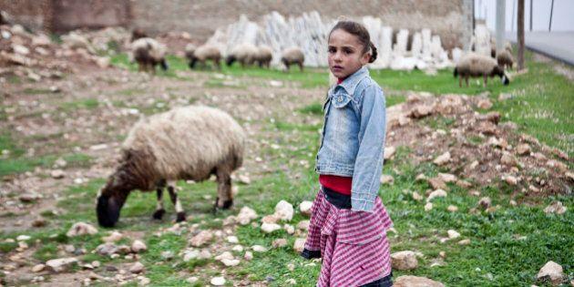 A Kurdish girl is seen in Gramel village, north of Aleppo, Syria, Saturday, Dec. 22, 2012. This village...