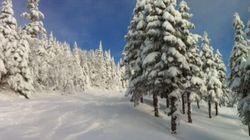 Bonne semaine pour le ski et autres activités