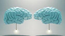 Pas de cerveaux féminins ou