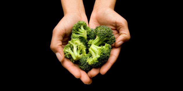 Human hands holding broccoli in cupped