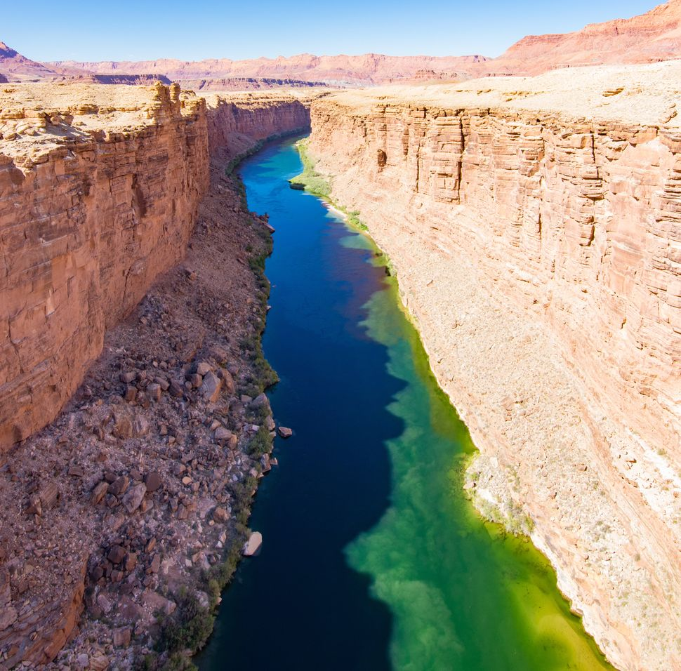 An algae bloom in the Colorado River above the Grand Canyon.