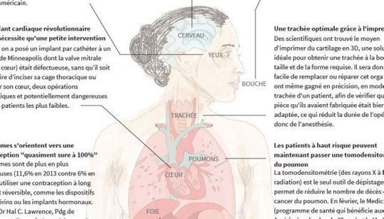 12 choses apprises sur le corps humain en
