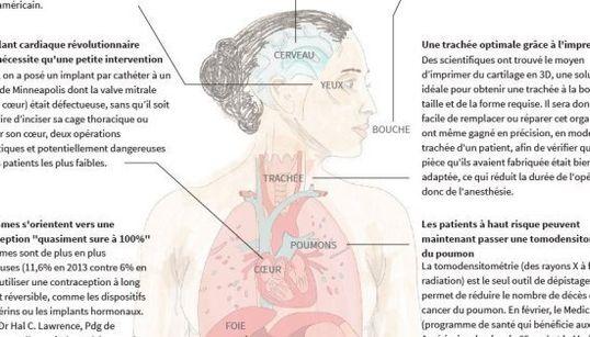 12 choses incroyables que nous avons apprises sur le corps humain en