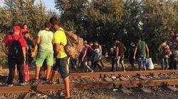 Hongrie: Cette clôture qui n'arrête pas les migrants