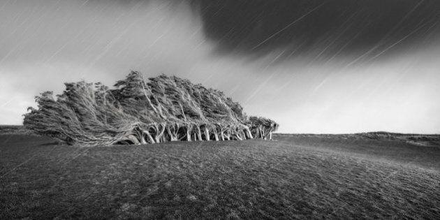 Ces photographies de paysages ont été primées à un concours international