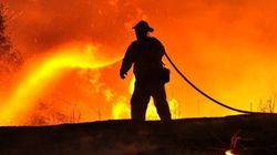 Mulcair propose un plan contre les feux de forêt