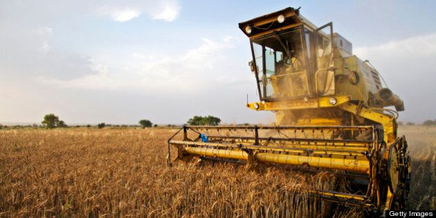 A farmer harvests wheat using a New Holland Clayson 1545 combine harvester in the Chakwal district of...