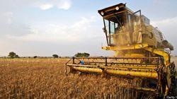 L'agriculture prime sur l'aéronautique, dit le ministre