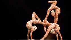 Le Cirque du Soleil serait