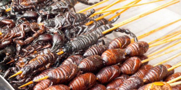 Roasted fried insects and scorpions and bugs as snack street food in