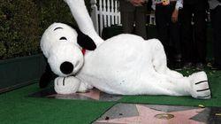Snoopy a son étoile à