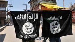 État islamique: un an de détermination
