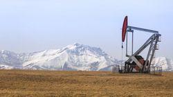 Le pétrole rebondit