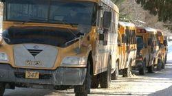 Des autobus scolaires pour le transport en