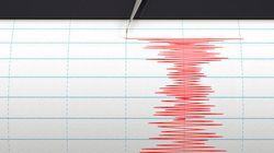 Puissant séisme en Asie du Sud, plus de 200