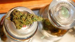 Légalisation du cannabis : Où en est le reste du monde?