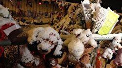 Cédrika: la neige complique les