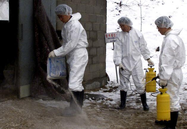 Μογγολία: Κρούσματα «Μαύρου Θανάτου» έχουν σημάνει συναγερμό στις