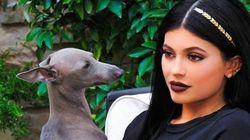 Kylie Jenner porte la nouvelle tendance cheveux avec classe