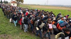 Arrivée d'un nombre record de migrants en Slovénie