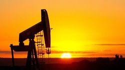 Les projets écolos que pourraient financer les subventions aux énergies