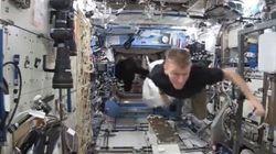 Mais que fait ce gorille dans la Station spatiale internationale?
