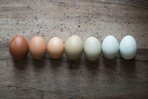 Petit guide à l'usage de ceux qui doivent remplacer les œufs (ou qui n'en ont