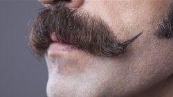 Où sont passées les moustaches de