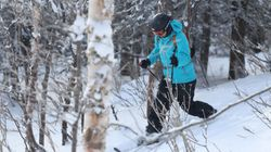 Le ski Hok, une drôle de bestiole à