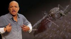 «We nuh want Zik V»: le dancehall jamaïcain contre les moustiques