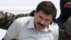 Sept employés incarcérés après l'évasion du baron mexicain de la