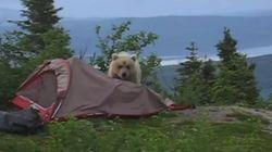 Voici ce qu'il ne faut PAS faire en camping
