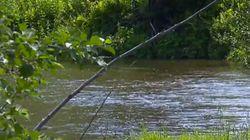 Baignade en rivière : attention, elles sont sournoises et dangereuses