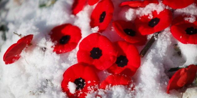 Poppies lay in the snow placed at the base of a cross for the Unknown Soldier at Remembrance Day ceremony...