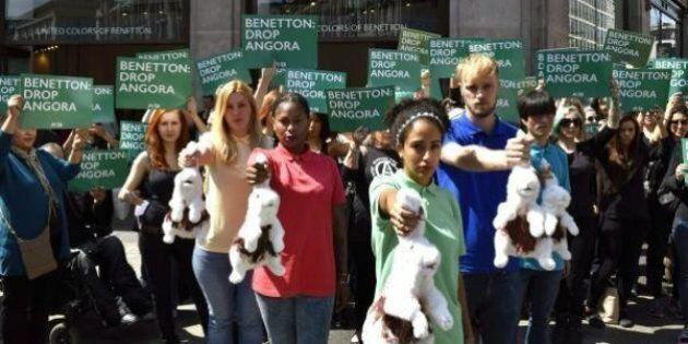 Victoire de PETA: Benetton renonce à la laine