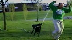 Ce chien s'amuse à arroser son maître