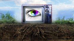 Les organisations sociales pourront-elles influencer l'avenir de la télévision